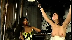 Her tits are bound and tortured by her cruel lesbian mistress