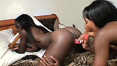 With their fingers and a few dildos, two black lesbians satisfy each other's desires