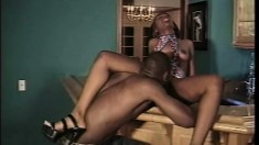 Horny chocolate babe surrenders her juicy snatch to a black stallion